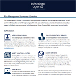 ISA Risk Management List of Services